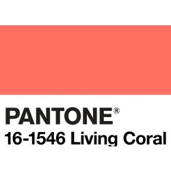 Catania 2019 - living coral