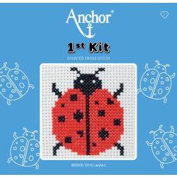 Anchor 1st Xszemes kit - katica