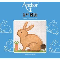 Anchor 1st Xszemes kit - nyuszi