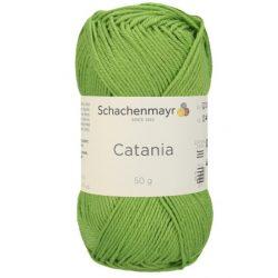 Catania 418 - lomb
