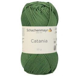 Catania 212 - kiwi